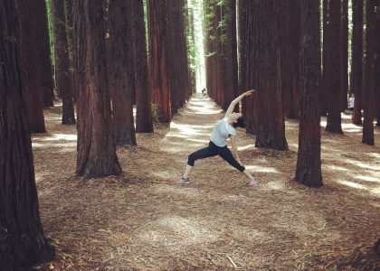 Redwoods yoga 2
