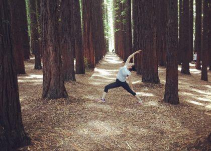Redwoods yoga 2